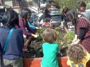 Japanese group gardening