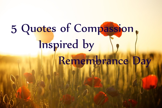 5 Quotes Of Compassion Inspired By Remembrance Day Frog Hollow