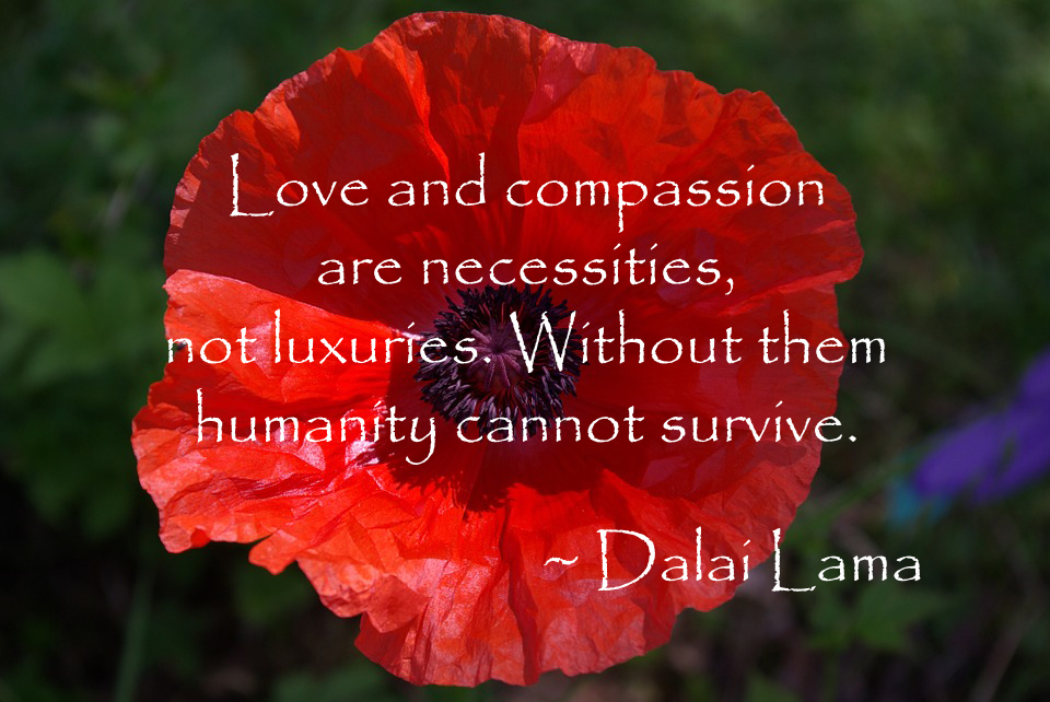 960 642 pixels dalai lama quote love and compassion
