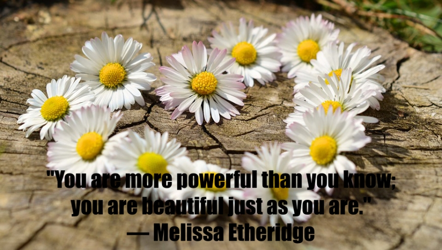 daisy-heart-melissa-etheridge-beautiful-quote
