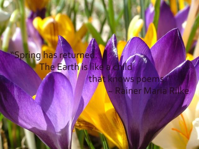 rainer-maria-rilke-spring-quote-card-700px